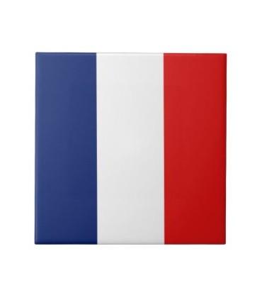 Bandera plástico de Francia