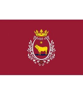 Bandera de Teruel Ciudad