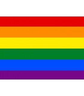 Bandera Gay Economica