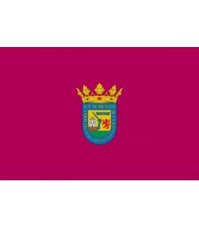 Bandera de Alava Ciudad