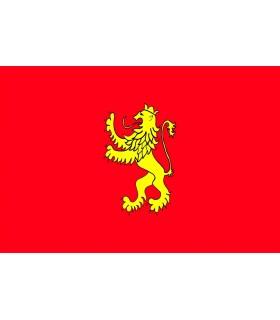 Bandera de Zaragoza ciudad