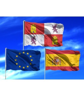 Lote de Banderas Castilla leon