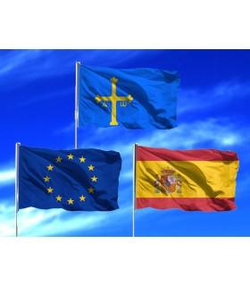 Lote de Banderas de Asturias
